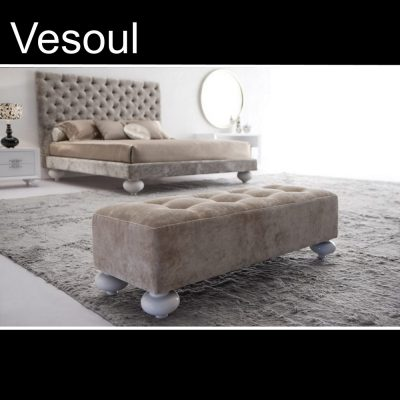 Vesoul, Έπιπλα Ζάγκα.